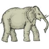 startseite elefanten 01 03 elefant 7 8. Black Bedroom Furniture Sets. Home Design Ideas